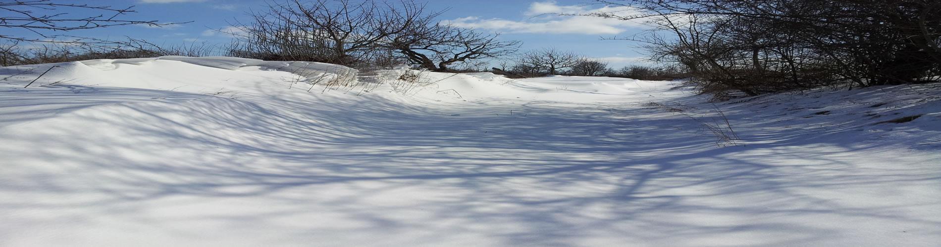 Einsamer Winter im Gäste- und Ferienhaus Uckermark