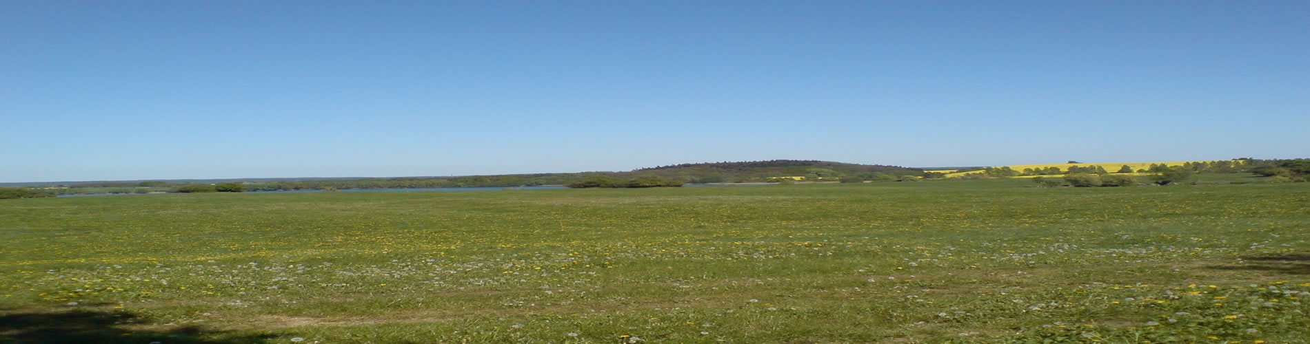 Uckermärkische Felder und Seen nahe dem Gäste- und Ferienhaus Uckermark