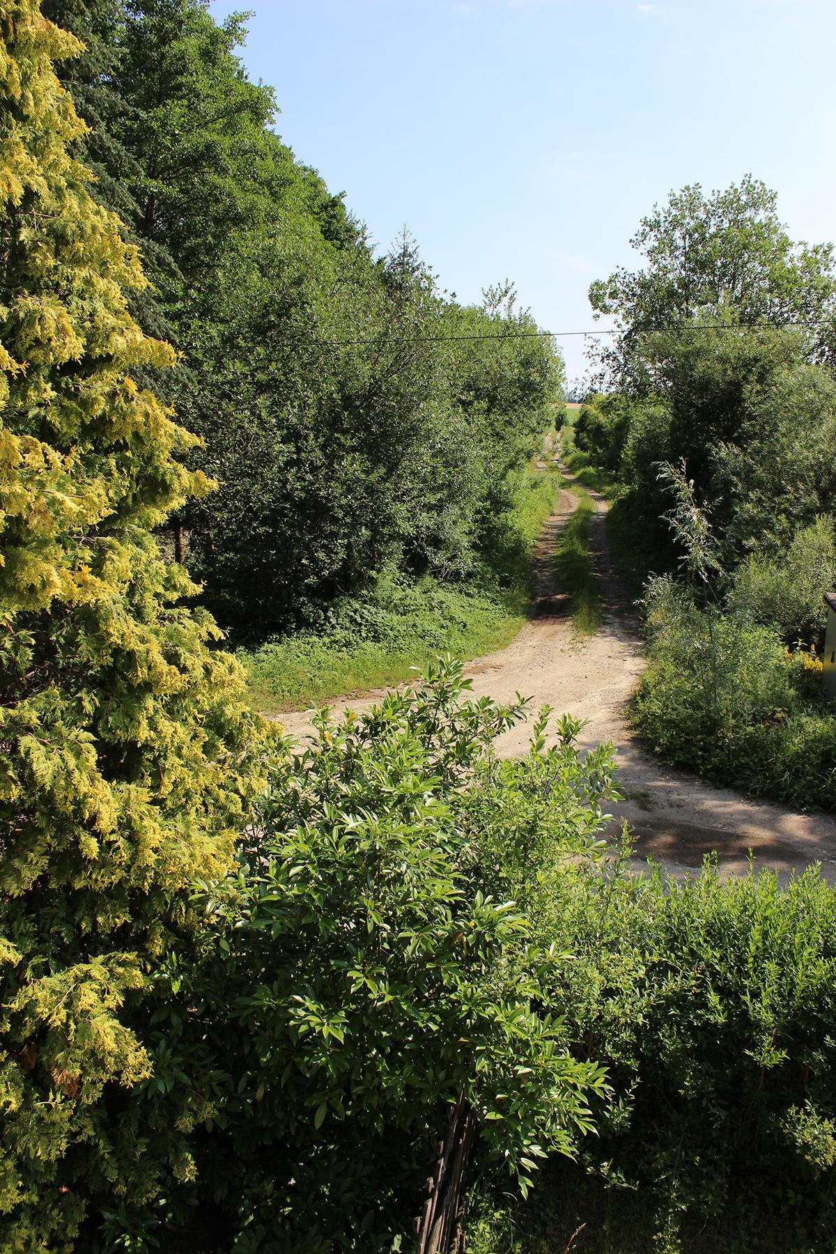 Das Ferienhaus-Uckermark Garten, mit weiten Wegen ins Boitzenburger Land schon ab 29,- Euro pro Tag